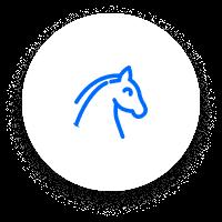 Horse racing icn 01